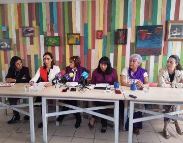 Defienden ONG's refugios y estancias infantiles