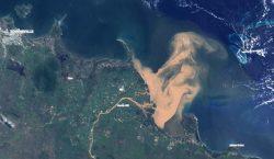 La escorrentía contaminada, una nueva amenaza para la Gran Barrera…