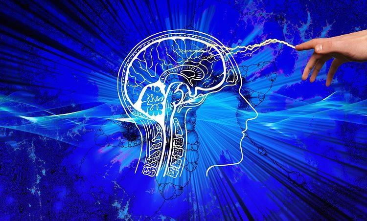 """El cerebro del hombre es 3 años """"más viejo"""" que el de la mujer aunque tengan la misma edad"""