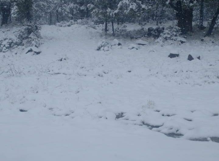 Nieve y vientos para los próximos días en Chihuahua