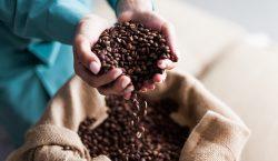 Femcafé: dar valor al trabajo de las mujeres en los…
