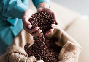 Femcafé: dar valor al trabajo de las mujeres en los cafetales