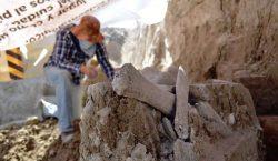 Encuentran restos de mamuts en Edomex durante excavación para relleno…