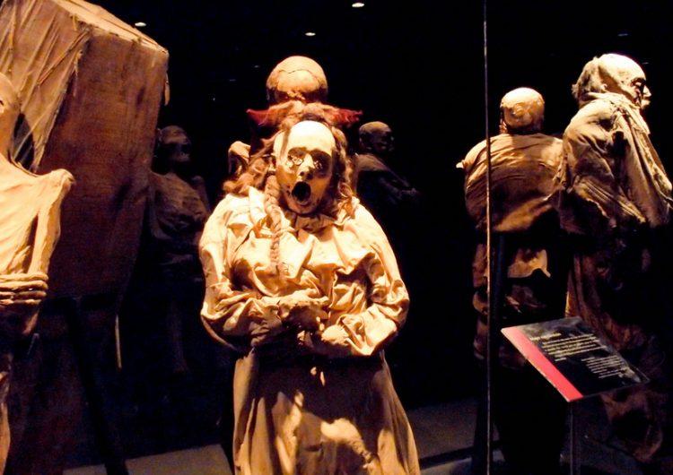 Regresa al museo la momia que fue atacada por un hongo