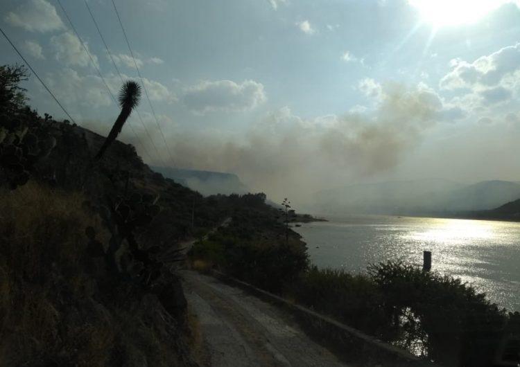 Sofocan incendio forestal en la comunidad de Mexquitic
