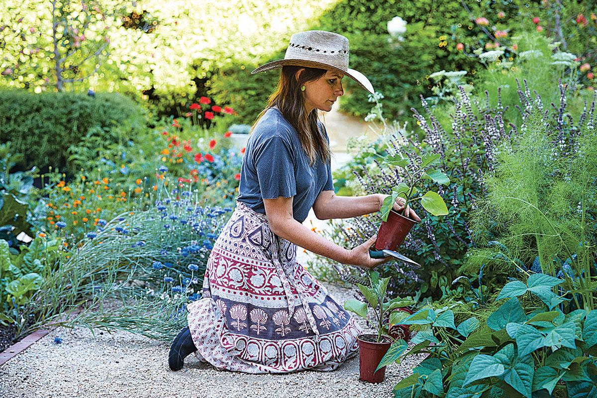 jardín, cultivos, huertos, vegetales, salud, naturaleza, sembrar
