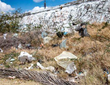 Para enero de 2020, sanciones por uso de bolsas de plástico en Aguascalientes capital