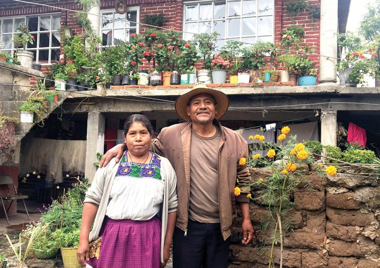 Rutopía: conectar el turismo con la gastronomía indígena de México