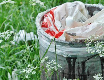 Tiene Pabellón de Arteaga 6 meses para prohibición total de bolsas de plástico