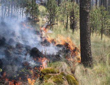 Incrementan incendios forestales en Puebla