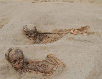 Descubren en Perú el sacrificio masivo de niños más grande de la historia