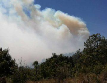 4 días lleva incendio forestal en el municipio de Zautla, Puebla