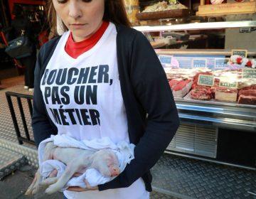 Dan cárcel a dos veganos por ataques contra carnicerías en Francia