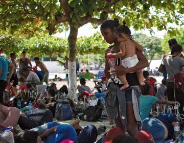 Papa Francisco dona 500 mil dólares para apoyar a migrantes que cruzan México