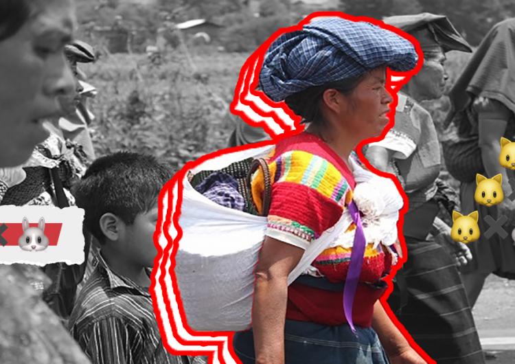 Promete atender a indígenas en BC con datos equivocados