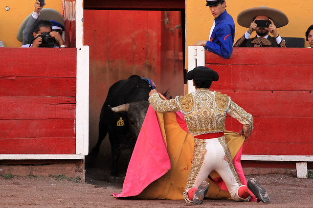 Promete Iván Sánchez Nájera eliminar subsidio de la academia taurina