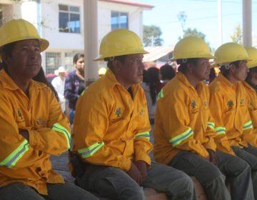 Brigadistas combaten siete incendios en la Sierra; controlan cuatro