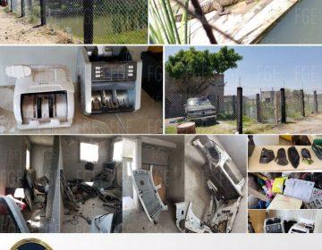 Encuentran tres cocodrilos y autopartes robadas en Cortazar