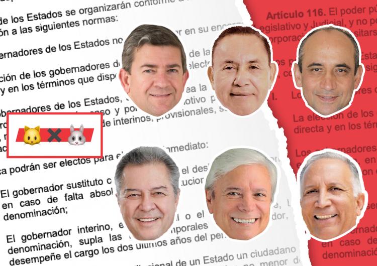 Esto es lo que sí puede hacer un gobernador: cuidado con el #GatoxLiebre