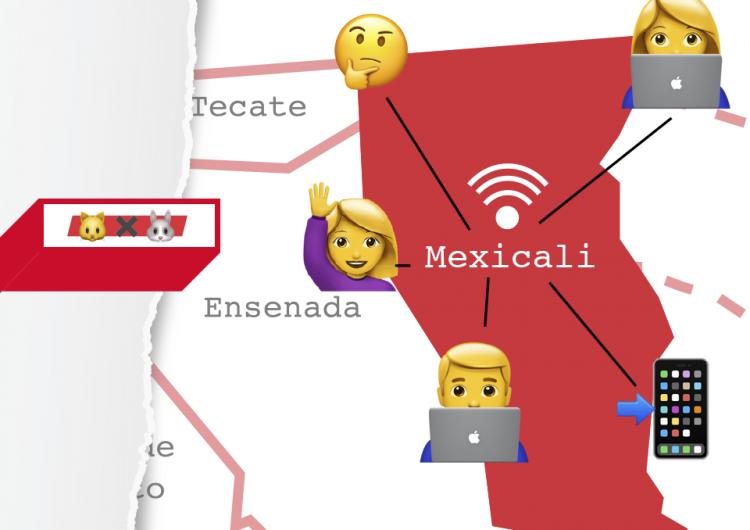 ¿Internet gratuito en todo Mexicali? No tan rápido… suena a #GatoxLiebre