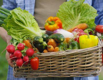 Gastronomía orgánica en un gran destino turístico