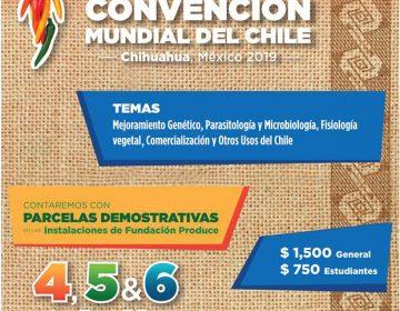 Lanzan página web por Convención Mundial del Chile