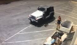 Arrestan a mujer por supuestamente arrojar una bolsa con siete…