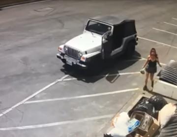 Arrestan a mujer por supuestamente arrojar una bolsa con siete cachorros a un basurero de Coachella