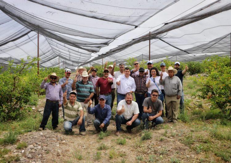 Productores guayaberos de la región Ojocaliente se reunieron con Adán Vadivia