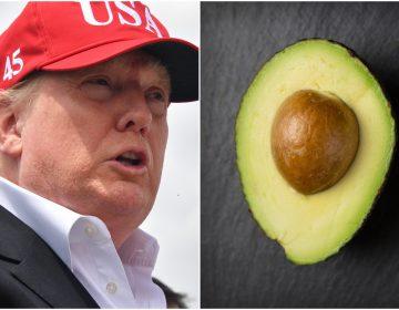 El plan de Donald Trump de cerrar la frontera dejaría a EU sin aguacates y otros alimentos