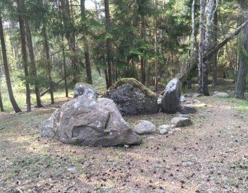 Estudio de ADN revela 10 generaciones de europeos en tumbas colectivas de la Edad de Piedra
