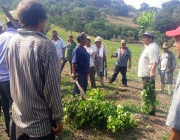 Crean guardia comunitaria en Yahualica