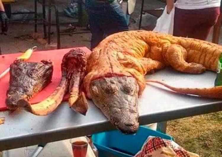 En Huejotzingo exabanderado a diputado cocinó 2 cocodrilos