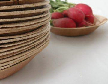 ¿Cuánto cuestan los desechables biodegradables en Hidalgo?