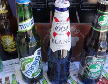 No te pierdas el primer festival de la cerveza hidalguense