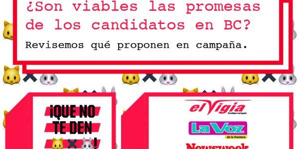 Arranca Gato x Liebre, iniciativa que revisa la viabilidad de las promesas de campaña