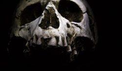 Esqueleto encontrado en un acantilado podría ser el de una…