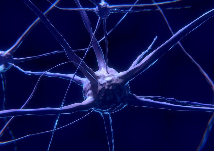estimulacion-cerebral-memoria