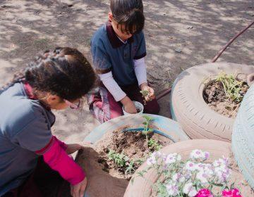 Promueven cultura de la paz en primaria de Aldama