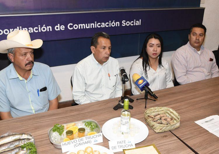 Impulsan consumo de trucha con festival en Guachochi