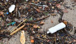 No más plástico ni unicel en Europa: Prohíben popotes, platos…