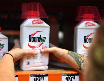Monsanto pagará más de 2 mil mdd a una pareja enferma de cáncer por un herbicida