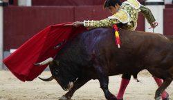 Las corridas de toros ¿una tradición que debería de ser…