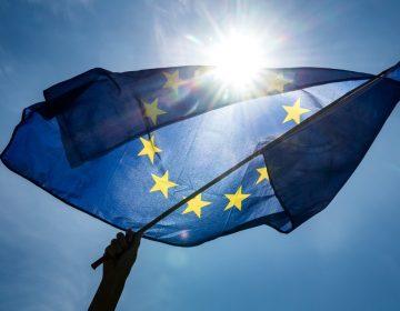 El Partido Popular, Le Pen y los euroescépticos: 7 puntos clave de las elecciones en la UE