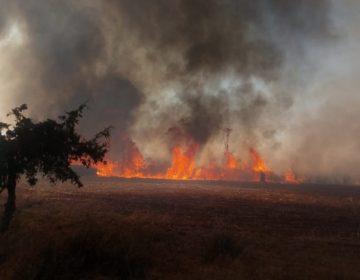 Arde Coahuila: entre incendios y altas temperaturas