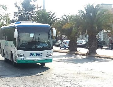 Ingresan empresas externas al servicio de transporte público de Aguascalientes