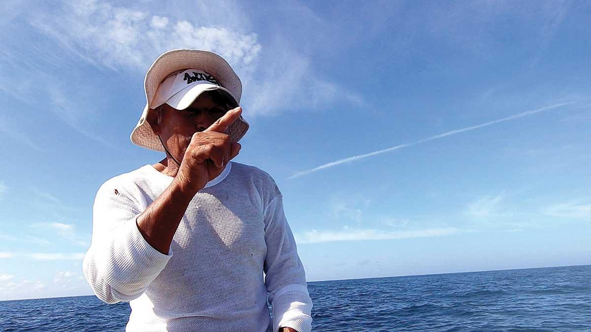 pulpo-maya-océano-medioambiente