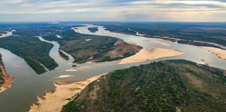 """Los humanos dañaron los ríos más largos del planeta y ahora solo un tercio """"fluye libremente"""""""