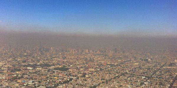 Opinión   Crisis ecológica