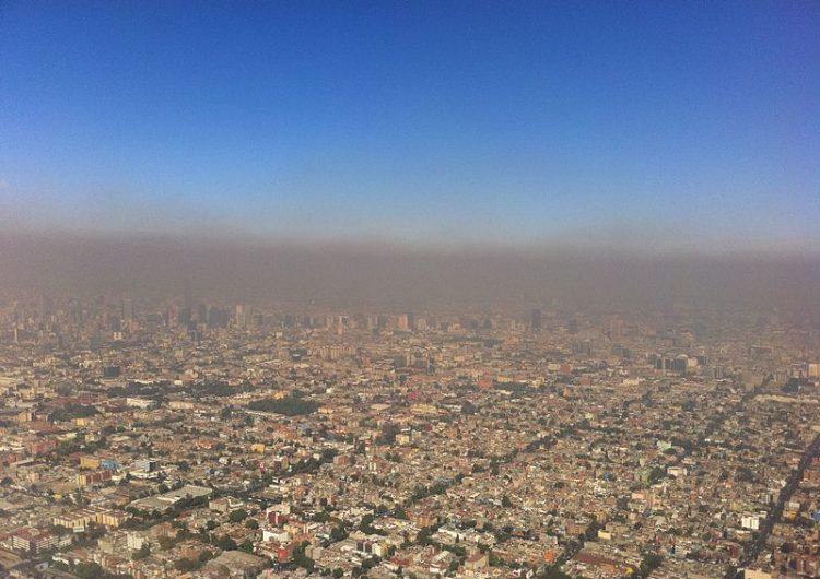 Opinión | Crisis ecológica